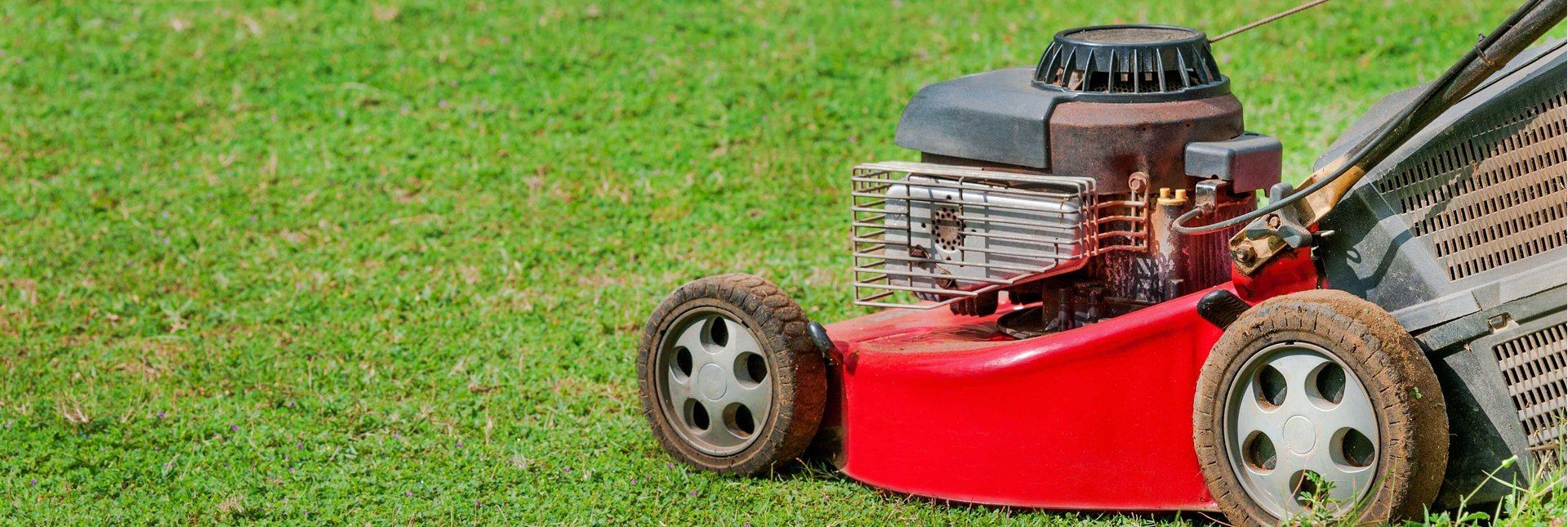 Our regular and seasonal ground maintenance services include: